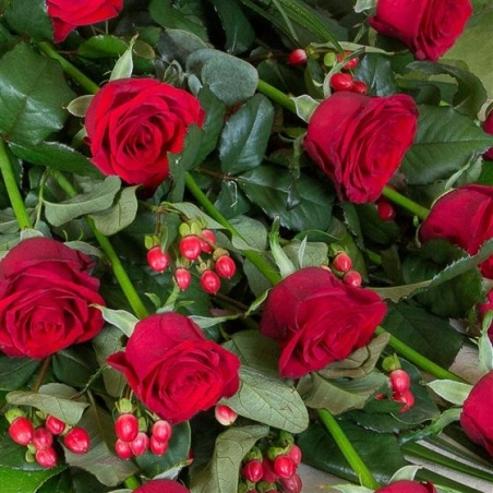 Classic Red Roses - same day or named day delivery - Rushes Florist