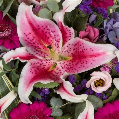 Stargazer Posy Pad - same day or named day delivery - Rushes Florist