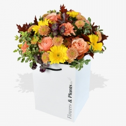 Peach Perfection - same day or named day delivery - Rushes Florist