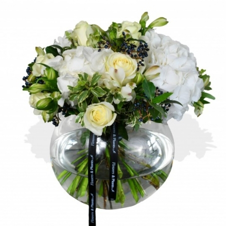 White Pearls - same day or named day delivery - Rushes Florist
