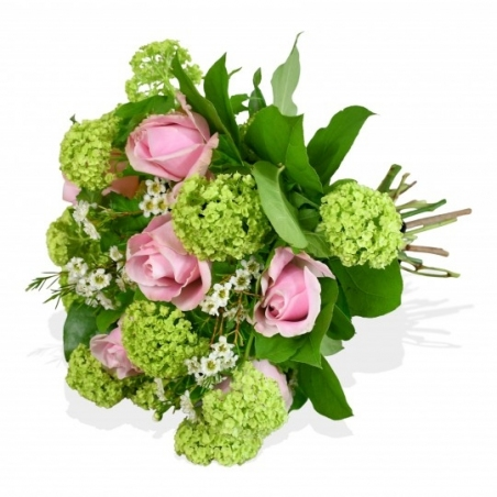 Home Sweet Home - same day or named day delivery - Rushes Florist