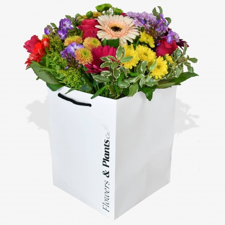 Lollipop - same day or named day delivery - Rushes Florist