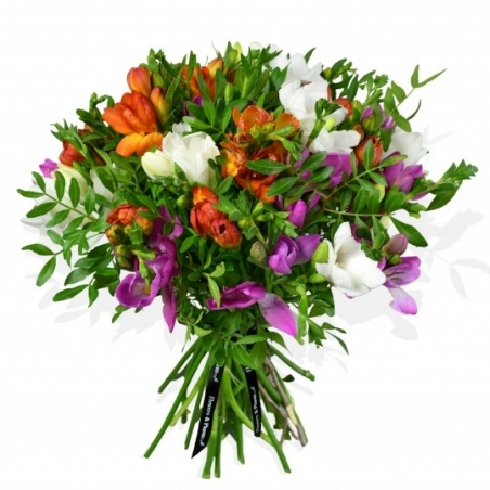 Freesia Fresca - same day or named day delivery - Rushes Florist