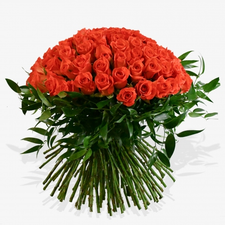 Paradiso - same day or named day delivery - Rushes Florist