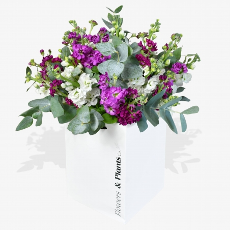 Dancing Days - same day or named day delivery - Rushes Florist