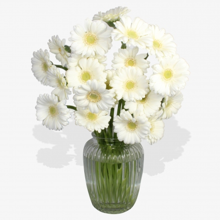 Lonely as a Cloud - same day or named day delivery - Rushes Florist