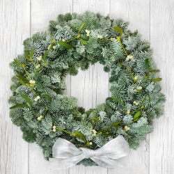 Mistletoe Kiss - same day or named day delivery - Rushes Florist