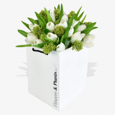 Winter Tulips - same day or named day delivery - Rushes Florist