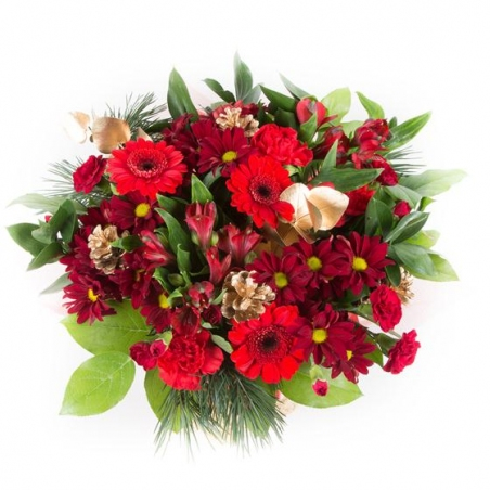 Christmas Celebration - same day or named day delivery - Rushes Florist