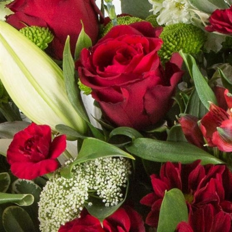 Yuletide - same day or named day delivery - Rushes Florist