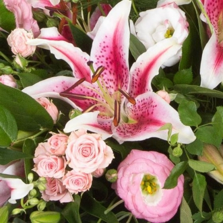 Pink Casket Spray - same day or named day delivery - Rushes Florist
